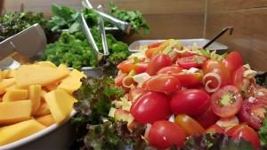 catarina-salada_0002_20151026_110207